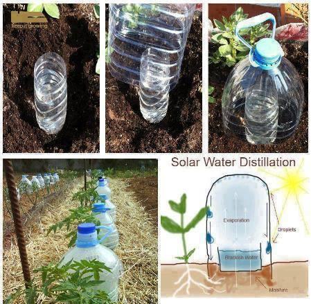 23 Creativas Formas De Volver A Utilizar Las Botellas De Plástico05