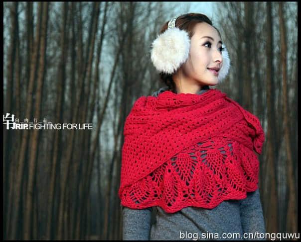 Patron para hacer un chal tejido a crochet para invierno08