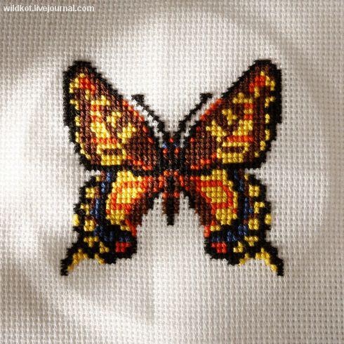 Graficos de mariposas en punto de cruz04