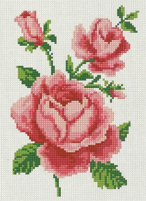 rosas en punto de cruz07