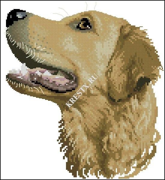 Apliques de perritos en punto de cruz03