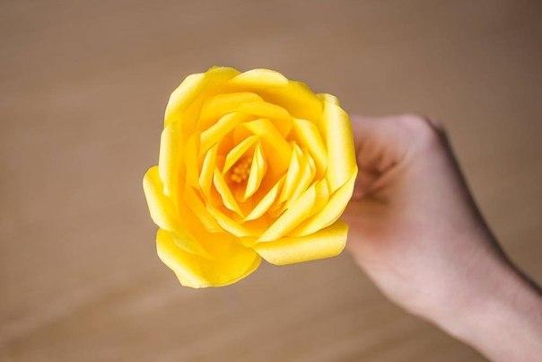 Como hacer rosas de papel crepe (1)