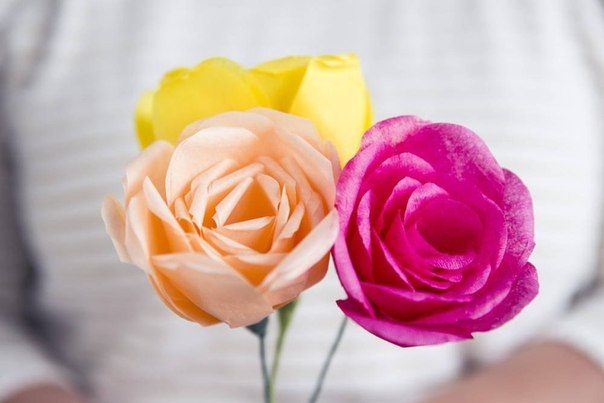 Como hacer rosas de papel crepe (5)