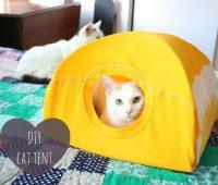 Cómo hacer una casa para gatos con una camiseta